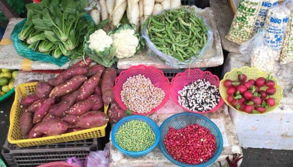 Hoi An – Farmarbeit und Kochkurs