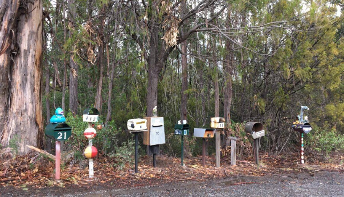Tasmanien – Hobart und das MONA