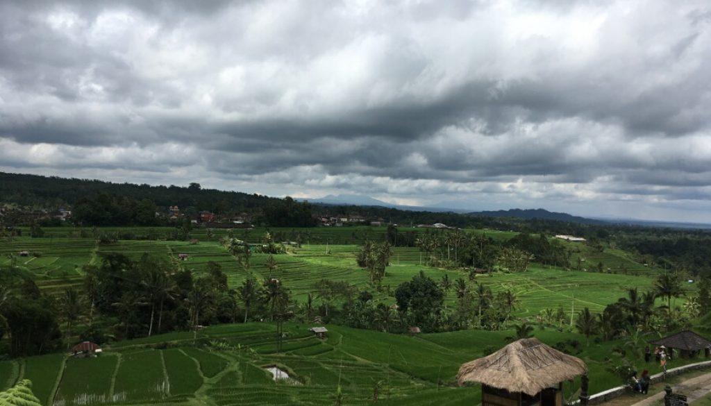 Bali – Seminyak, Ubud und der Mount Batur