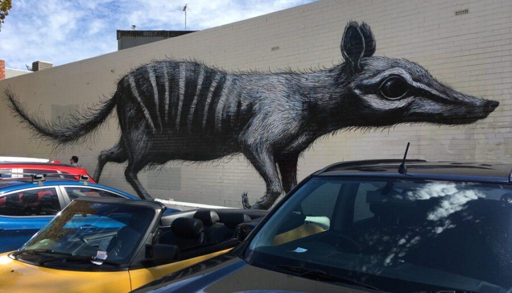 Perth – Ein Sonntag in 'Freo'